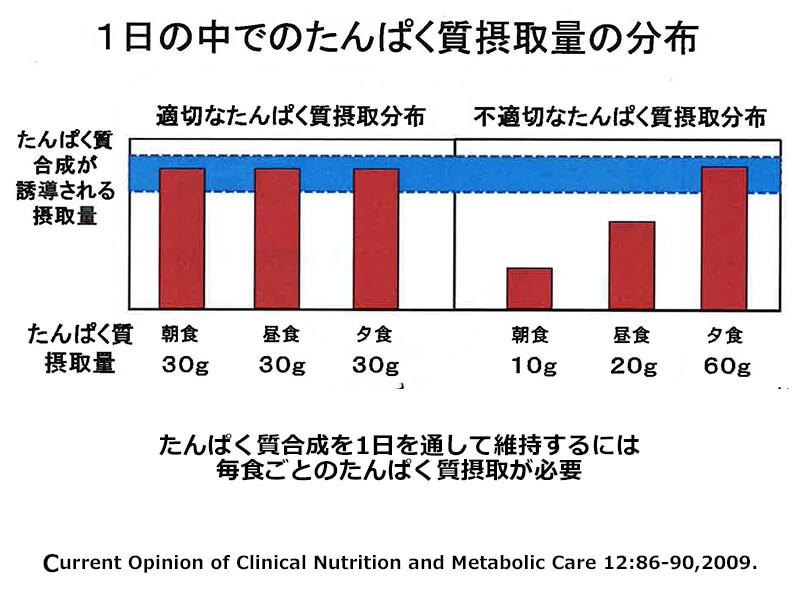 1日の中でのたんぱく質摂取量の分布
